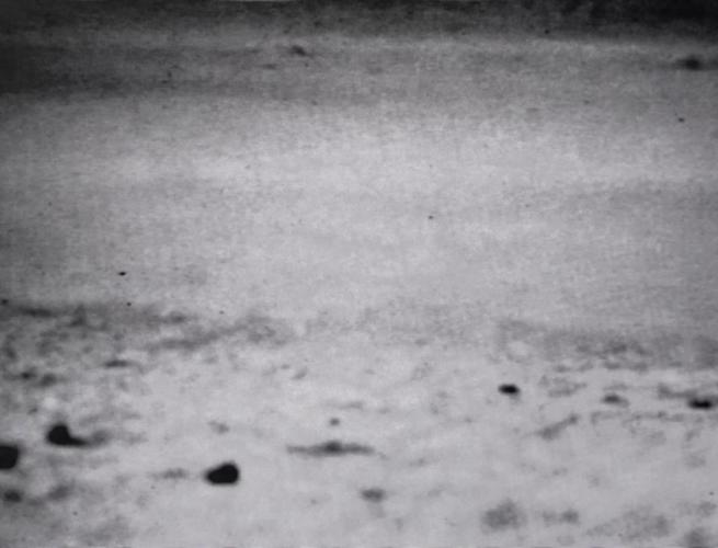 Desert Sand - Videoartevirale 1